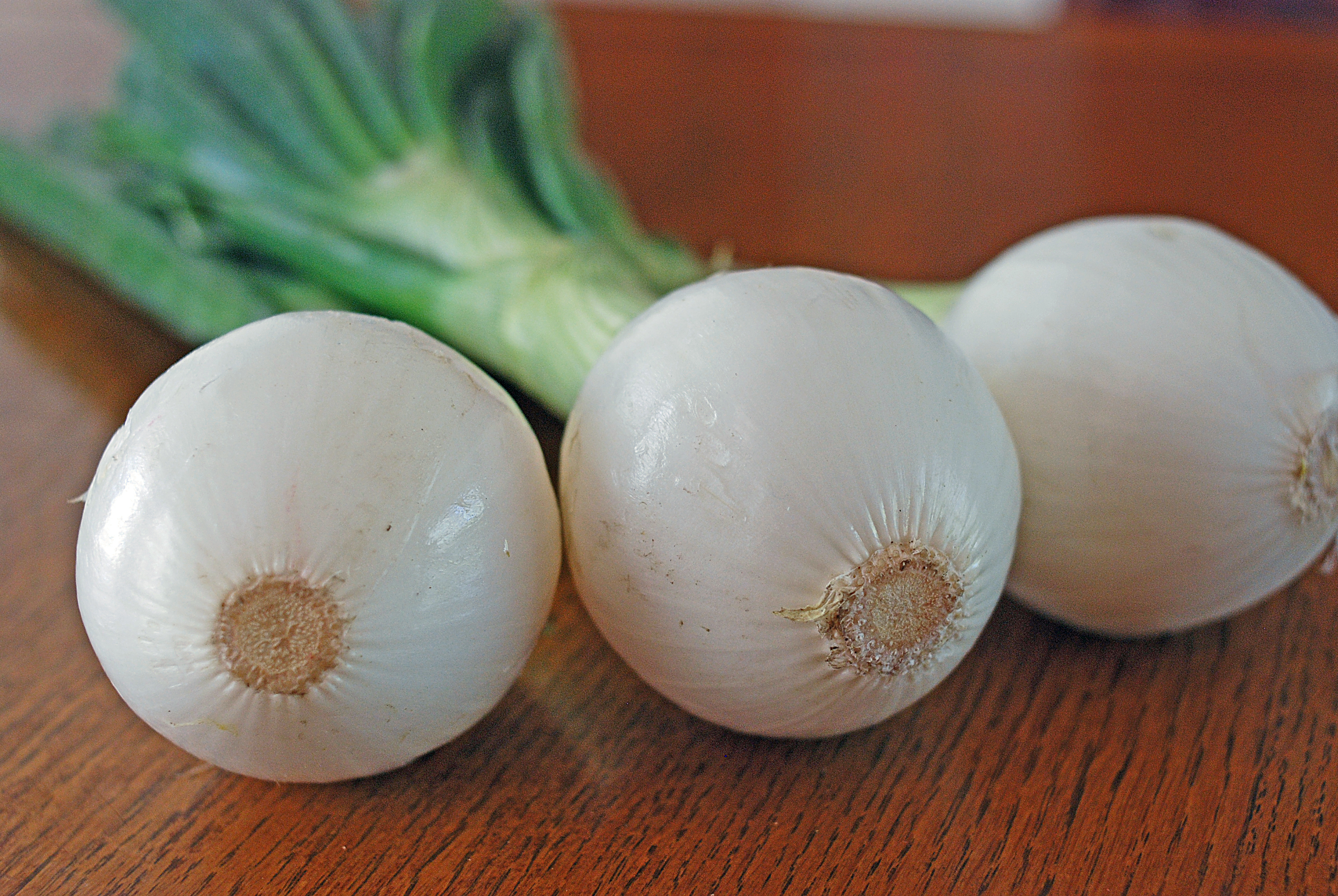 Spring Onions have a fully formed bulb